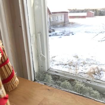 Köksfönstret mot fältet. En halmbock från loppis. Fönsterlav som jag hoppas ska hjälpa mot kondensen.